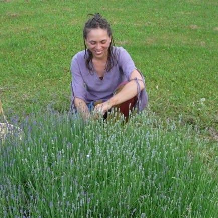 Les vertus des fines herbes | Maude Marcaurelle