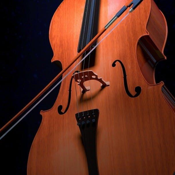 Violoncelleries avec Catherine Mathieu, violoncelliste et musicologue.