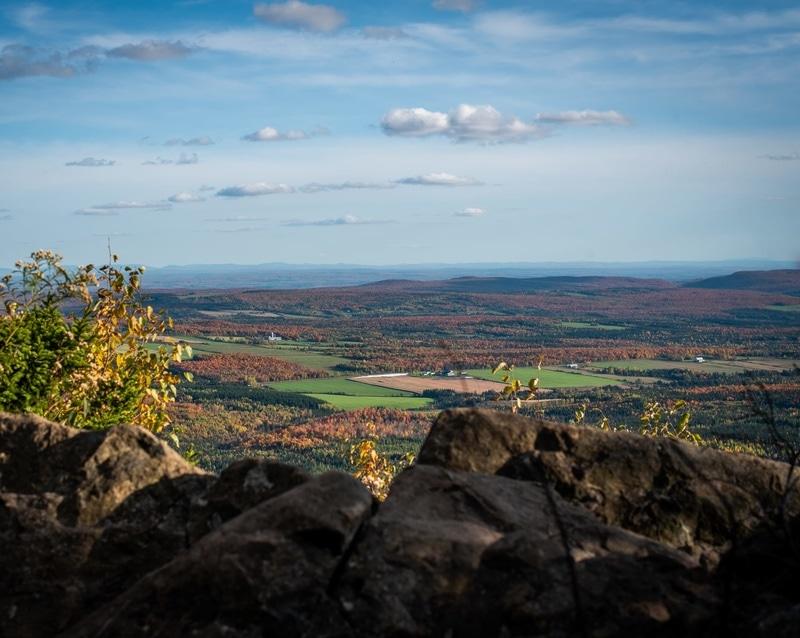 Mount Ham Regional Park