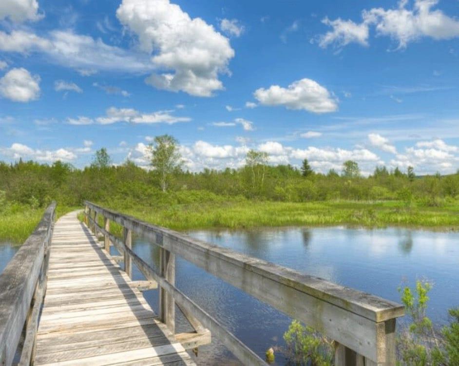 Parc du lac Aylmer (sentier du marais Maskinongé)
